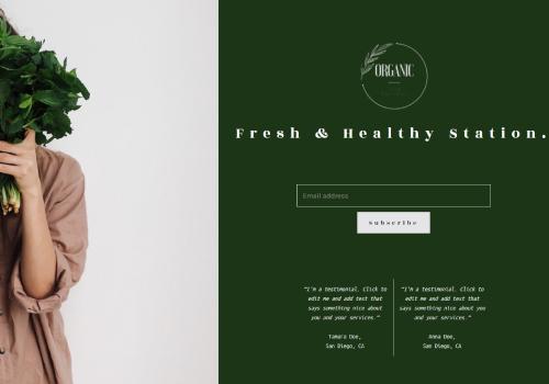 Organic Shop theme