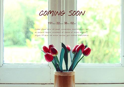 Tulips theme