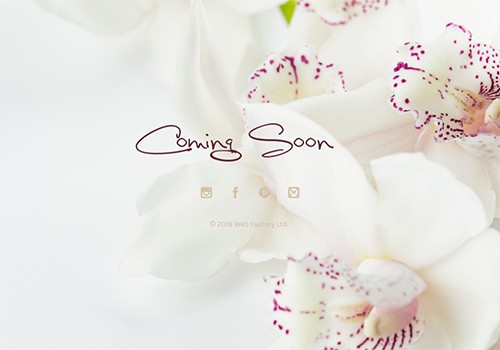 White Orchids theme